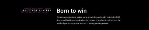 Asus ROG Phone 5-12